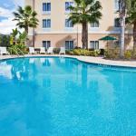 Holiday Inn Express Hotel & Suites New Tampa I-75 Bruce B. Downs Foto