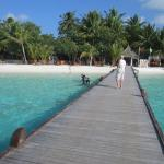 Photo de Vilu Reef Beach & Spa Resort