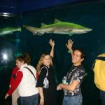 Foto de The Maritime Aquarium