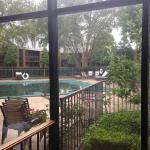 Looking out at the courtyard and outdoor pool