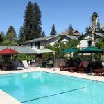 The Woods - Russian River Hotel