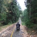 Vallley Trail in Whistler