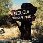 Nearby places - Sequoia National Park, Tulare Outlet Shopping Mall and property