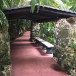 Photo of Pinecrest Gardens