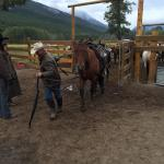 Photo of Banff Trail Riders - Day Rides