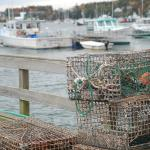 Lobster Traps - Beal's Lobster Pier, Southeast Harbor, ME