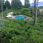 98 Acres Resort Foto
