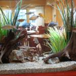 Fish tank separates lobby from breakfast area