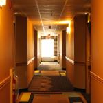 Photo de Holiday Inn Express Lewisburg/New Columbia