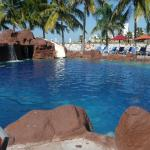 View of Iguana pool area
