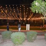 The Cholla courtyard & activties lawn
