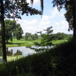 View as you walk from Inn to Gardens