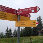 Hiking trails well marked