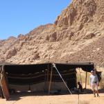 Photo de Bedouin Lifestyle Camp