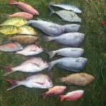 Keely Rose Fishing Charters