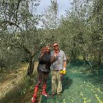 Carlo and Ornella harvesting olives