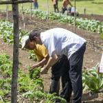 Farm to table dining at Chaa Creek from our Maya Organic Farm!