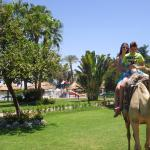 Photo of Maritim Jolie Ville Kings Island Luxor
