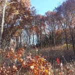 Photo of Kettle Moraine State Forest