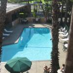 Pool View from Room 313