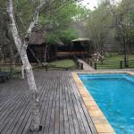 Toro Yaka Bush Lodge  |  Sable Road, Kruger National Park, South Africa