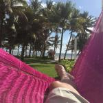 view from our palapa. i'm lying in the provided hammock