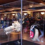 Artifacts on display in lobby