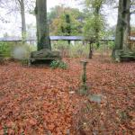 Some of the grounds with Autumn foliage