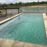 Arathusa Safari Lodge  |   Kruger National Park, South Africa - lodge swimming pool