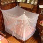 Beach house downstairs bedroom - nets are highly recommended!!
