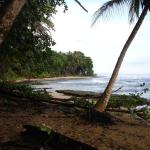 short walk on a cute path to the private beach - so beautiful in the morning (bring bug spray)