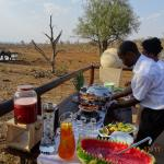 High tea on the lower deck nearest to the water hole