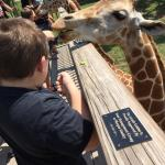 We love this little zoo!