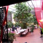 The garden at the Green Mango