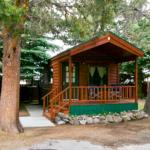 Cabin number nine