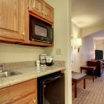 Holiday Inn Express Hotel & Suites Hannibal Foto