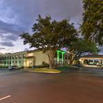 Holiday Inn And Suites Tampa North