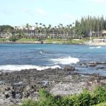 Photo of Napili Shores