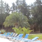 Alfamar Beach & Sport Resort Foto