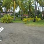 Photo of Cocomar Residences & Beach Resort