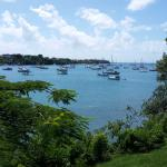 Yachts in Prickly Bay - view from spa