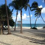 The gorgeous beach at Melia Caribe Tropical