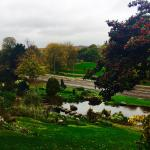 View towards the park from the Rockery