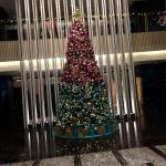 Photo of Pan Pacific Orchard
