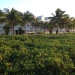 View of resort from a pier into the mangroves past the beach