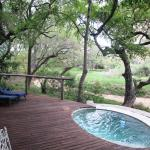 Private deck and pool