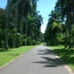 Foto de Royal Botanical Gardens