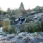 Waterfall and pond in the lower Oregon Garden area.