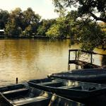 Canoes and boats up for grabs!