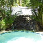 Waterfall in our pool